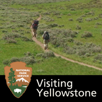 Visiting Yellowstone