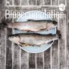 Bioaccumulation artwork