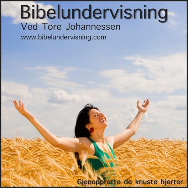 Bibelundervisning på Podcast (Audio)
