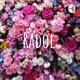 Radol