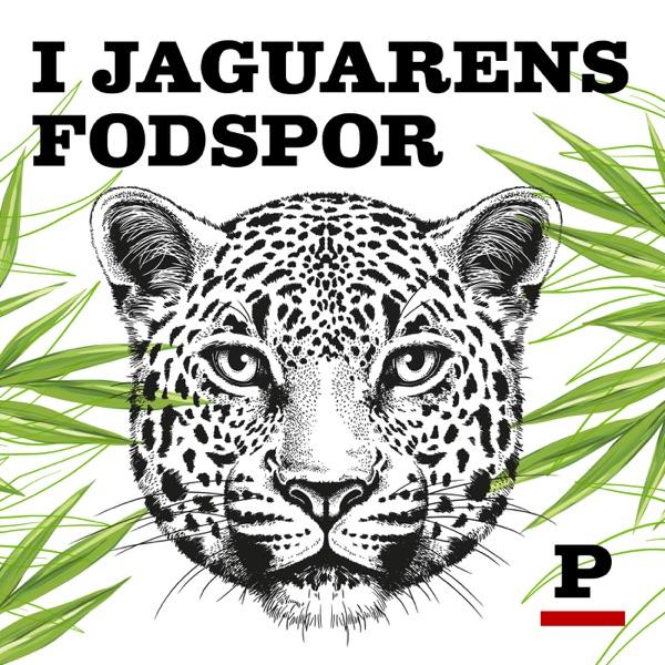 I jaguarens fodspor