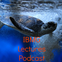 IBMG Lectures Podcast podcast