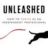 Unleashed - How to Thrive as an Independent Professional artwork
