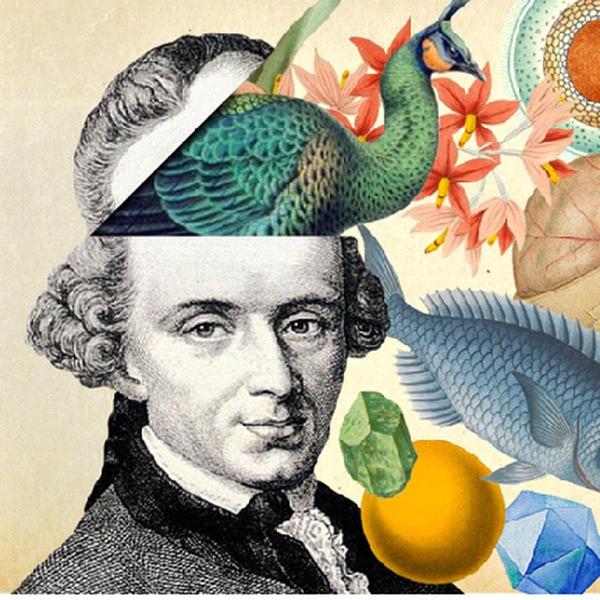 Kant, en klaar!