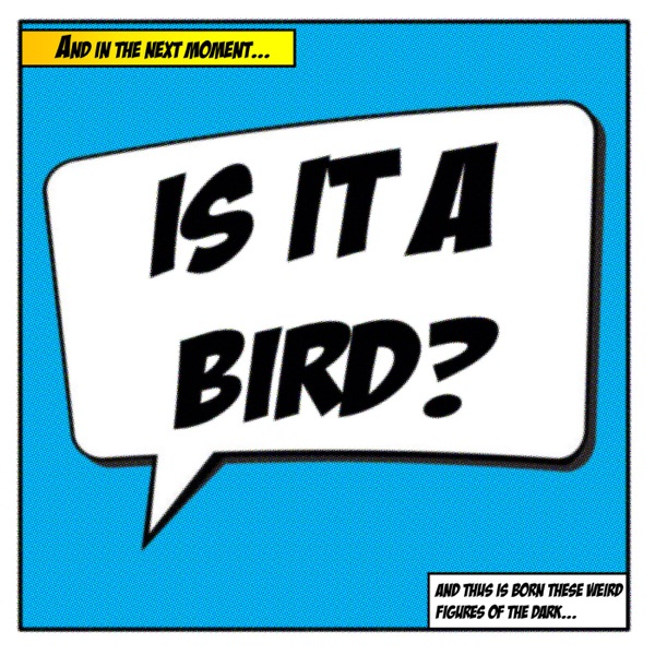 Is It A Bird's Podcast
