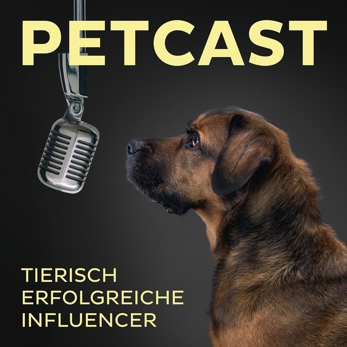 PETCAST – tierisch erfolgreiche Influencer