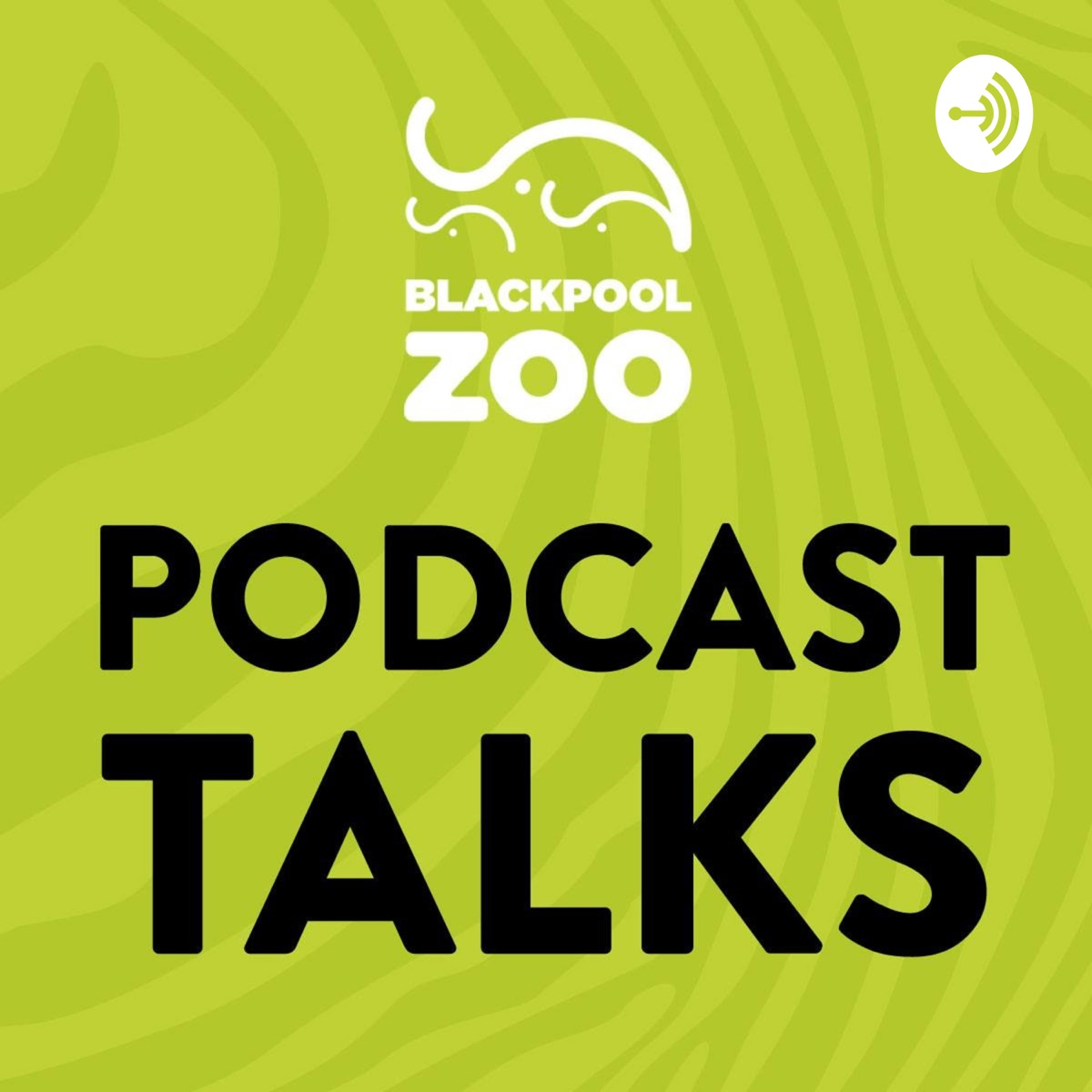 Podcast Talks at Blackpool Zoo