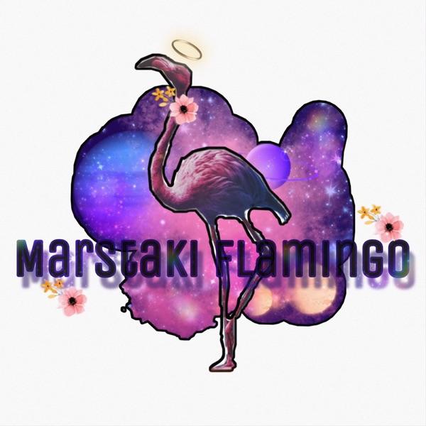 Mars'taki Flamingo