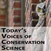 Today's Voices of Conservation Science artwork