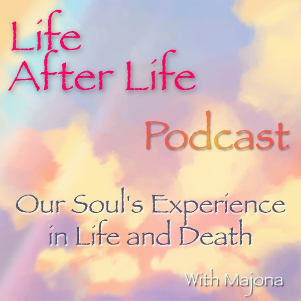 Life After Life Podcast - Our Soul's Experience in Life and Death
