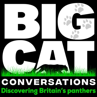 BCC EP:38    Prowling panthers & pumas – Summer sightings 2020