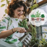 The Wild World of Plant-Tube! (a plant-tuber/Podcast Collaboration)