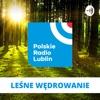 Leśne wędrowanie w Radiu Lublin