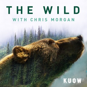 The Wild with Chris Morgan