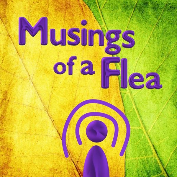Musings of a Flea