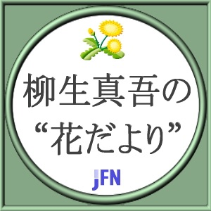 """柳生真吾の""""花だより"""""""