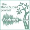 BJJ Podcasts artwork