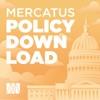 The Bridge Policy Download artwork