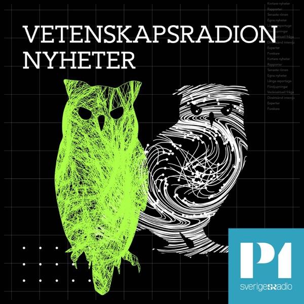 Vetenskapsradion Nyheter