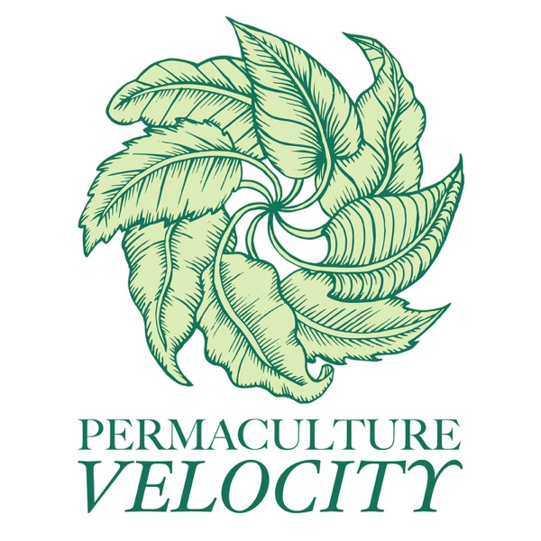 Permaculture Velocity | Homesteading Skills You Can Use