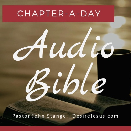 Cover image of Audio Bible