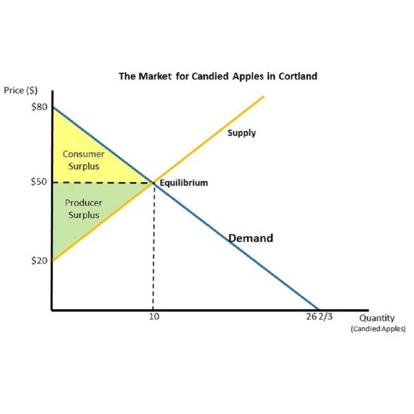 Colgate University Introductory Economics Course