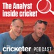 The Analyst Inside Cricket
