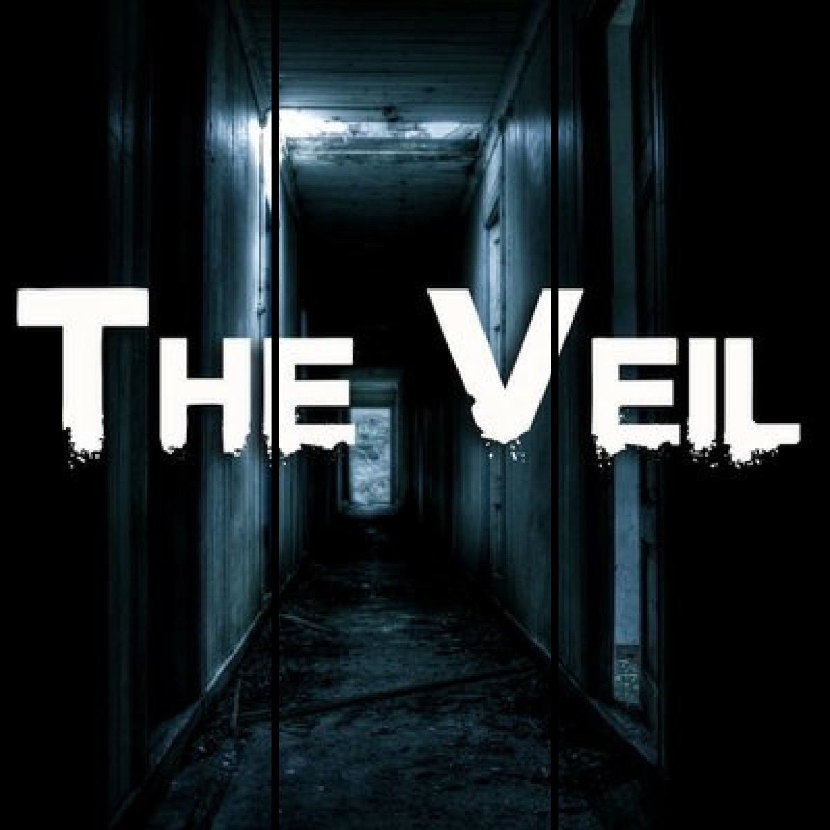 The Veil Audio Drama