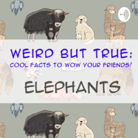 Weird But True: Cool Facts to Wow Your Friends! podcast
