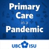 Primary Care in a Pandemic artwork