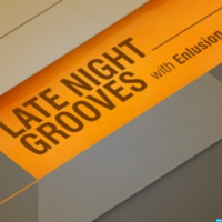Late Night Grooves with Enlusion podcast