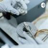 Chromatography Distinguishable Methods artwork