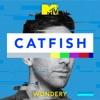 Catfish: The Podcast artwork