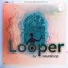 Looper artwork