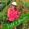 Field & Garden artwork