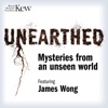 Unearthed - Mysteries from an unseen world