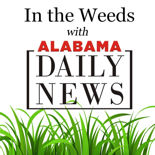 In the Weeds with Alabama Daily News