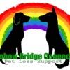 Rainbow Bridge Connection- Pet loss support  artwork