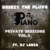 Breezy the pluvg's Private sessions vol.1 artwork