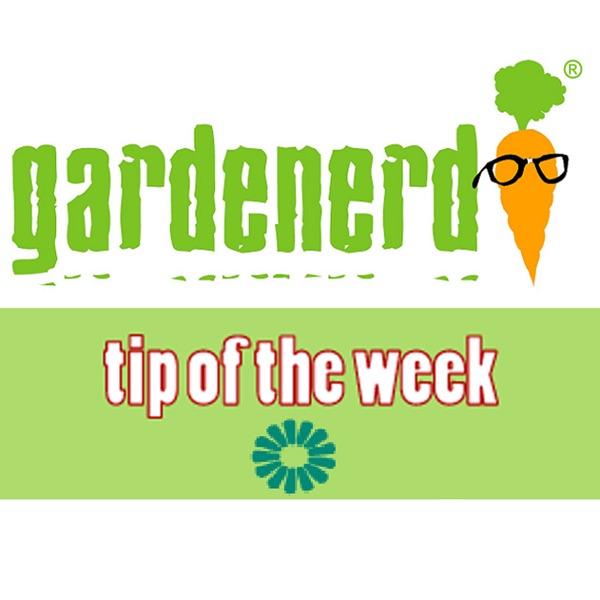 Gardenerd Tip of the Week Artwork