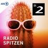 radioSpitzen - Kabarett und Comedy