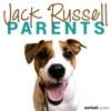 Jack Russell Parents artwork