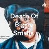Death Of Biggie Smalls  artwork