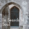 In Search of Soul artwork