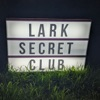 LARK Secret Club - A Family Video Game Podcast artwork