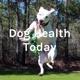 Dog Health Today