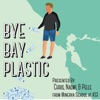 Bye Bay Plastic artwork