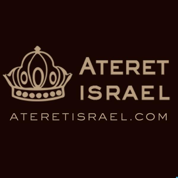 Rabbi Binyamin Jadidi's Podcast Artwork