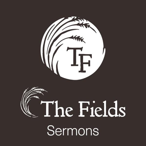 The Fields Church