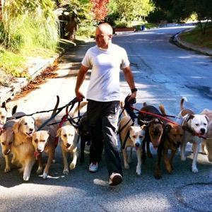 The Good Dog's Q&A Saturday!